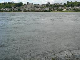 Candes-Saint-Martin en Indre-et-Loire | DIRECTION REGIONALE DE L'ENVIRONNEMENT, DE L'AMENAGEMENT ET DU LOGEMENT CENTRE-VAL DE LOIRE