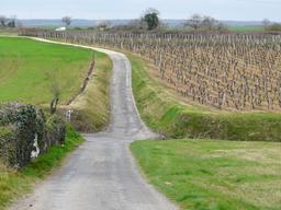 Paysage du Val de Loire | DIRECTION REGIONALE DE L'ENVIRONNEMENT, DE L'AMENAGEMENT ET DU LOGEMENT CENTRE-VAL DE LOIRE