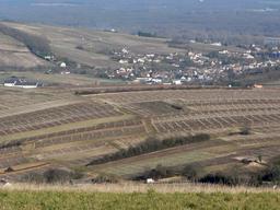 Paysage viticole à Sancerre  | DIRECTION REGIONALE DE L'ENVIRONNEMENT, DE L'AMENAGEMENT ET DU LOGEMENT CENTRE-VAL DE LOIRE