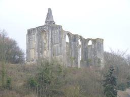 Site dans l'Indre-et-Loire : vestiges de la Collégiale des Roches Tranchelions à Avon-les-Roches | DIRECTION REGIONALE DE L'ENVIRONNEMENT, DE L'AMENAGEMENT ET DU LOGEMENT CENTRE-VAL DE LOIRE