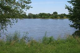 La Loire à Meung-sur-Loire (Loiret) | DIRECTION REGIONALE DE L'ENVIRONNEMENT, DE L'AMENAGEMENT ET DU LOGEMENT CENTRE-VAL DE LOIRE