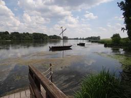 Fûtreau de Loire à Châteauneuf-sur-Loire (Loiret) | DIRECTION REGIONALE DE L'ENVIRONNEMENT, DE L'AMENAGEMENT ET DU LOGEMENT CENTRE-VAL DE LOIRE
