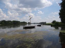 Fûtreau sur la Loire à Châteauneuf-sur-Loire (45-Loiret) | DIRECTION REGIONALE DE L'ENVIRONNEMENT, DE L'AMENAGEMENT ET DU LOGEMENT CENTRE-VAL DE LOIRE
