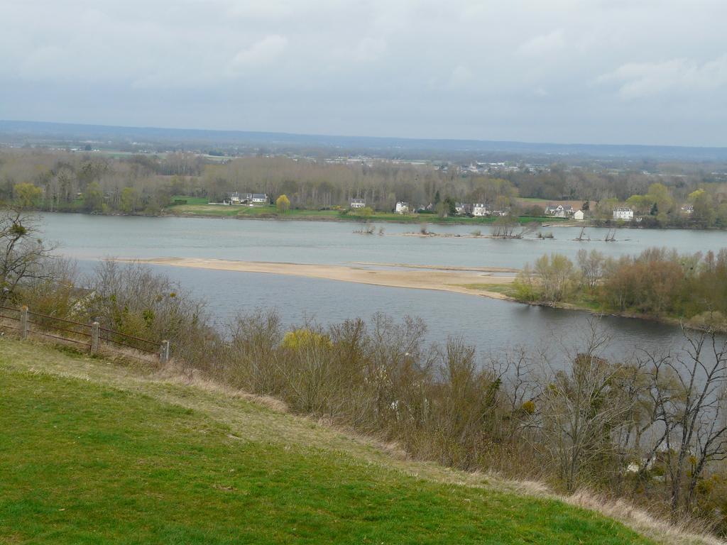 La Loire à Candes-Saint-Martin (Indre-et-Loire) | DIRECTION REGIONALE DE L'ENVIRONNEMENT, DE L'AMENAGEMENT ET DU LOGEMENT CENTRE-VAL DE LOIRE