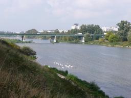 La Loire à Orléans | DIRECTION REGIONALE DE L'ENVIRONNEMENT, DE L'AMENAGEMENT ET DU LOGEMENT CENTRE-VAL DE LOIRE