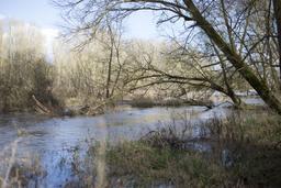 La Boire (Loir-et-Cher) | LELLU (Franck) - DREAL Centre-Val de Loire