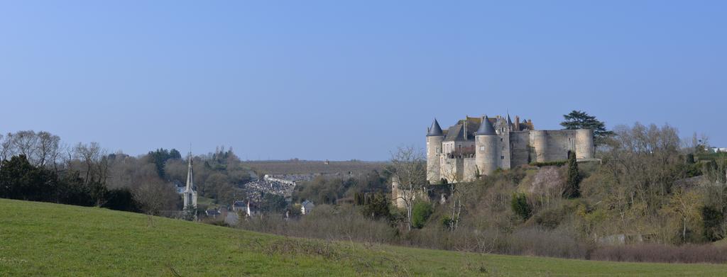 Luynes en Indre-et-Loire (37) | LELLU (Franck)