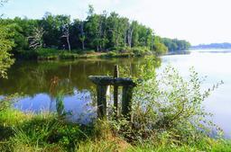 Réserve naturelle de Chérine : étang de Brenne (Indre) | ONCFS CENTRE- ILE- DE- FRANCE