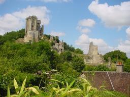 Village de Lavardin (41-Loir-et-Cher) : vue château   DIRECTION REGIONALE DE L'ENVIRONNEMENT, DE L'AMENAGEMENT ET DU LOGEMENT CENTRE-VAL DE LOIRE