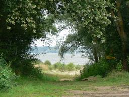 Candes-Saint-Martin (37) : vue sur la Loire | DIRECTION REGIONALE DE L'ENVIRONNEMENT, DE L'AMENAGEMENT ET DU LOGEMENT CENTRE-VAL DE LOIRE