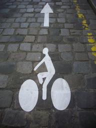 Marquage au sol piste cyclable  | GUILLEMAUT (Fabien) - DREAL Centre-Val de Loire