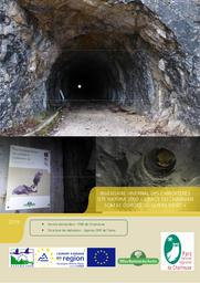 Inventaire hivernal des Chiroptères Site N2000 « Ubacs du Charman Som et Gorges du Guiers Mort » - FR8201741 | DUCRUET (Sylvain)