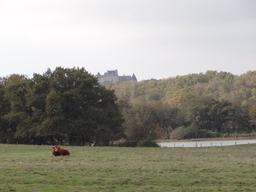 Vue sur le château du Bouchet dans le Parc naturel régional de la Brenne | SIMONNEAU (Aurore)