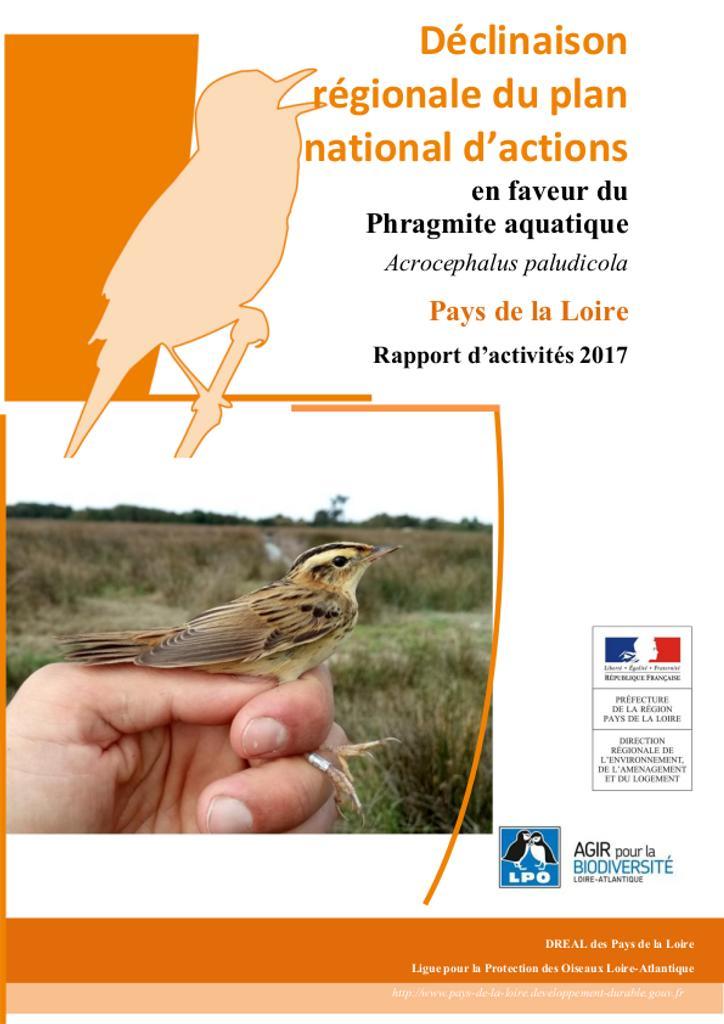 Rapport d'activités 2017 de l'animation de la déclinaison du PNA Phragmite aquatique en Pays de la Loire |